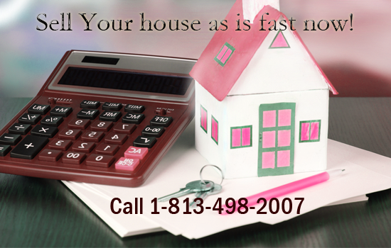 sell your home in palm harbor